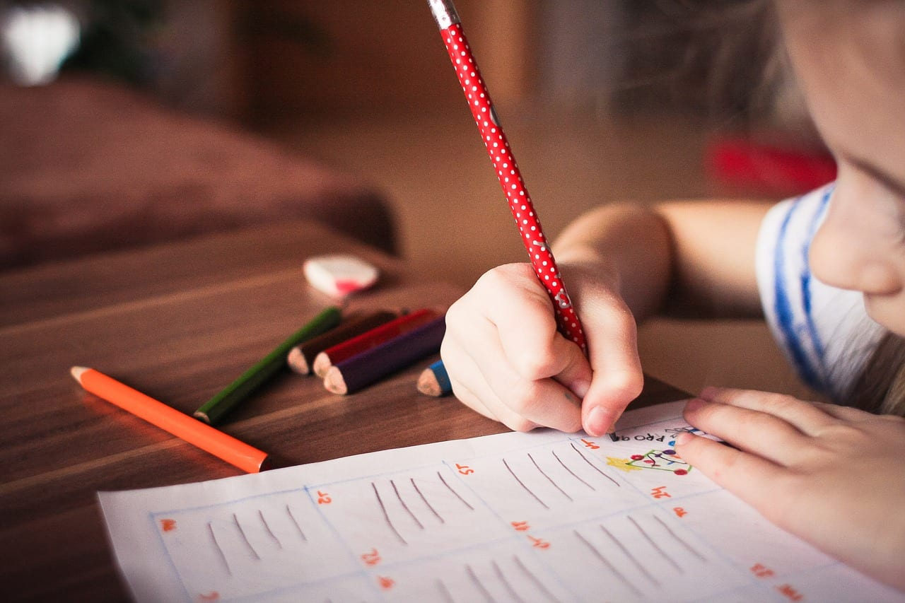 Additional Learning Needs – a new system of support for children and young people in Wales
